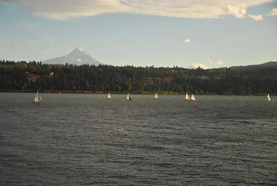 sailboats with Mt Hood