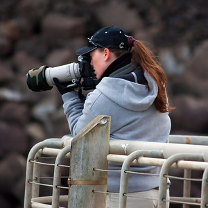 On to Yaquina.........Summer photographing the seals.