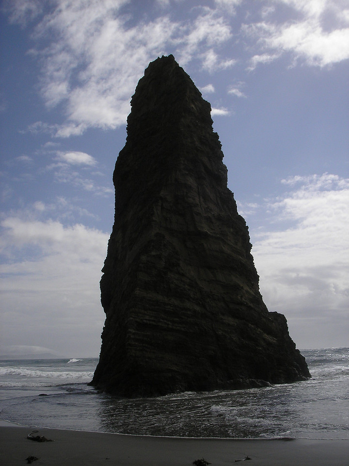 There are lots of rocks along the Oregon Coast.