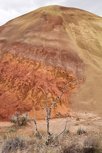 Red Rock trail, Painted Hills Unit