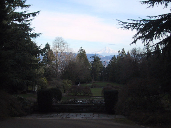 A view of Mt. Hood from a college campus in east Portland.