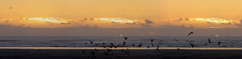 Oregon Beach Sunset
