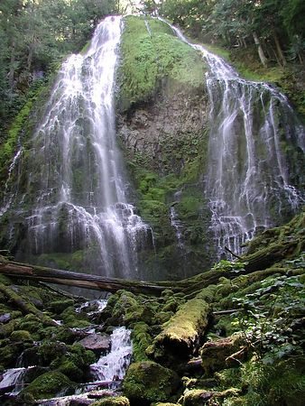 Oregon - Trees & Waterfalls