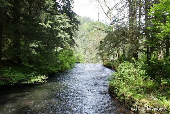 Peaceful Silver Creek