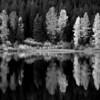 Autumn at Trillium Lake
