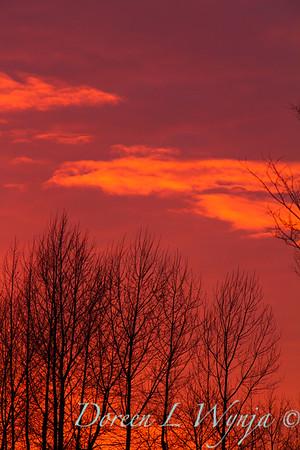 Sunset sky_0129
