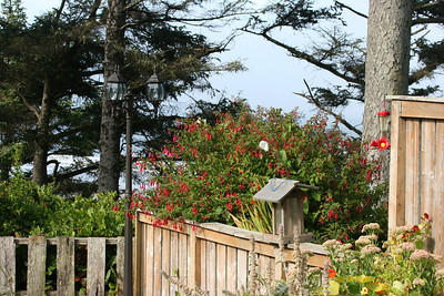 Tyee B&B - Newport, Oregon