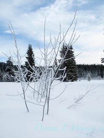 Trillium Lake ski trek_180