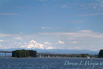 Mount Hood Columbia River_028