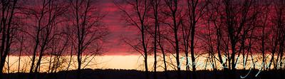 Sunset sky_0132 C
