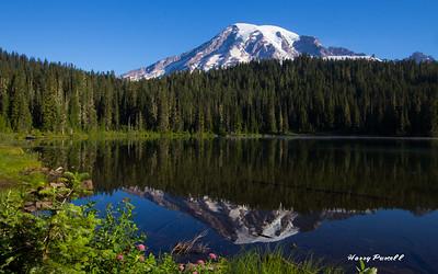 Reflection lake at Mt Rainier