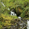 Oregon_4703