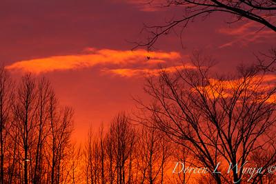 Sunset sky_0122