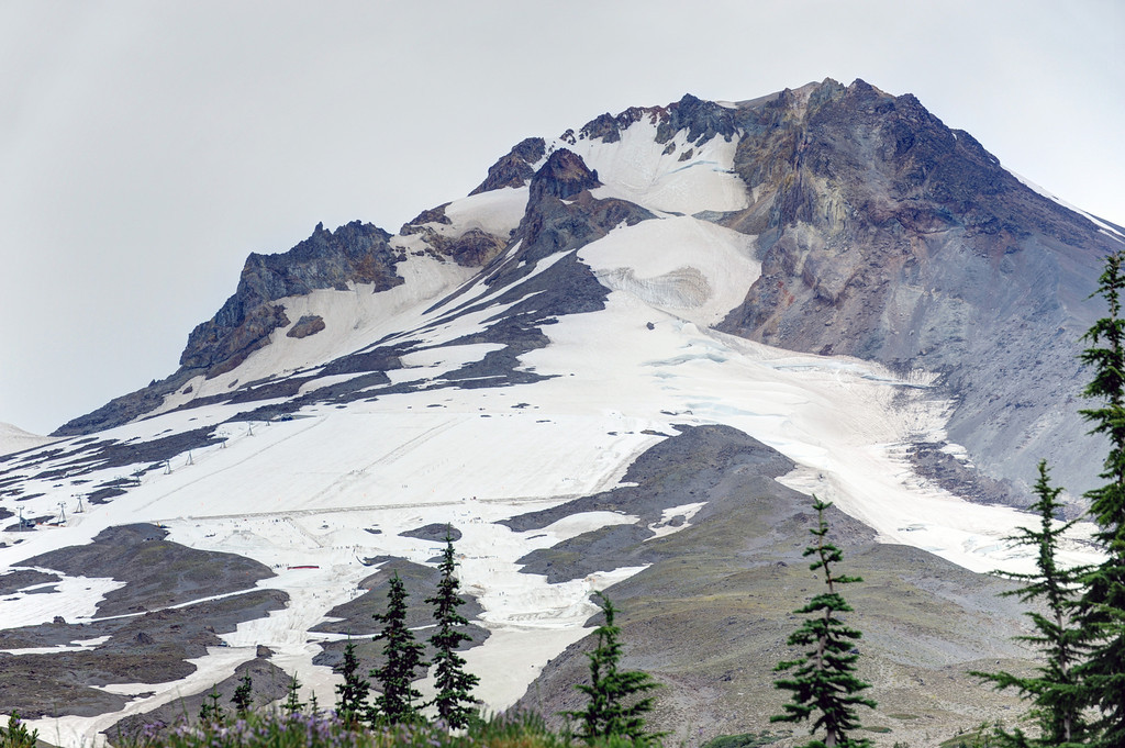 August Skiiers on Mount Hood