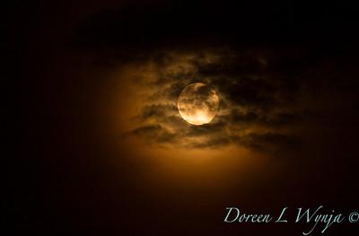 Full moody Moon_8777_72dpi