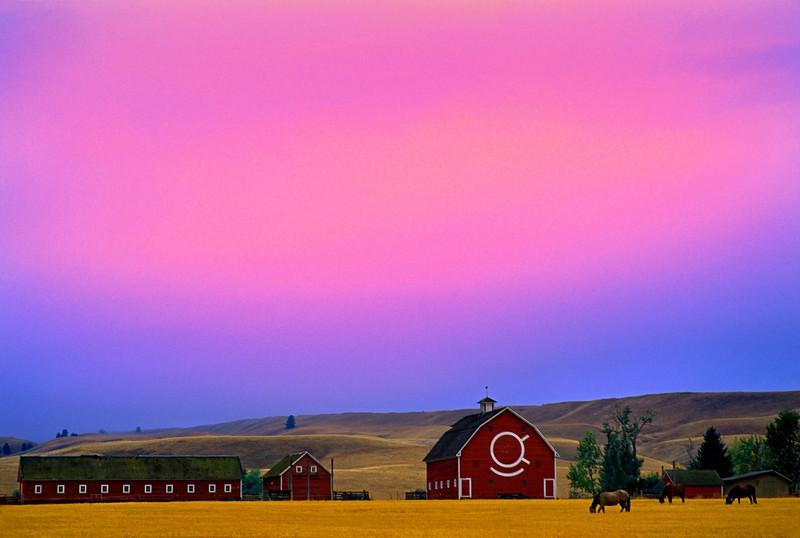 Dusk at the farm, Eastern Oregon.