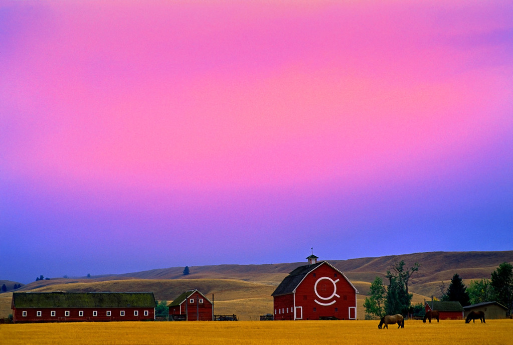 Dusk at the farm, Eastern Oregon.