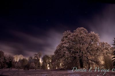 Aura Borealis Oregon style_009_16x