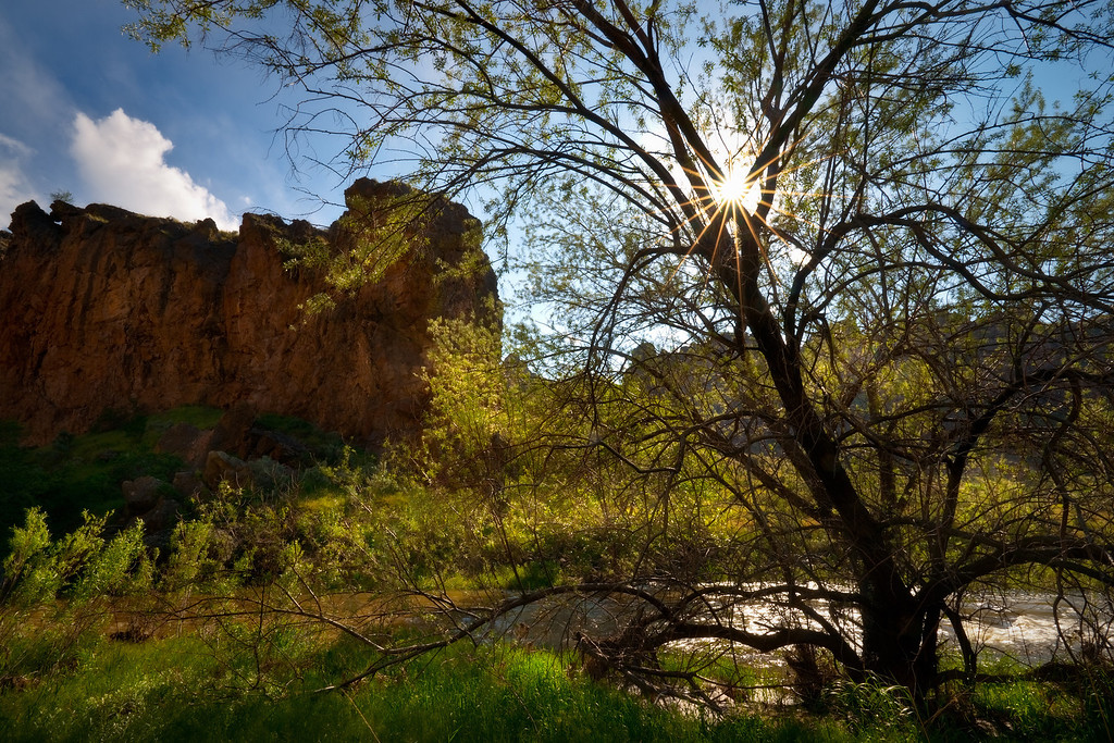 Sunstar at Succor creek, Oregon