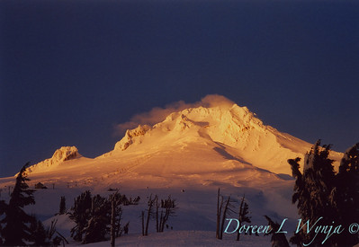 Mt Hood evening light_356