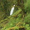 Oregon_4692