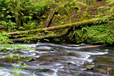 2013 - Oregon