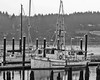 Florence Marina on the Siuslaw River
