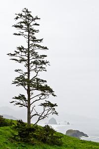 2013 - Ecola Park, Oregon