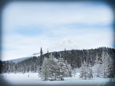 Trillium Lake ski trek_179