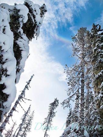 Trillium Lake ski trek_182