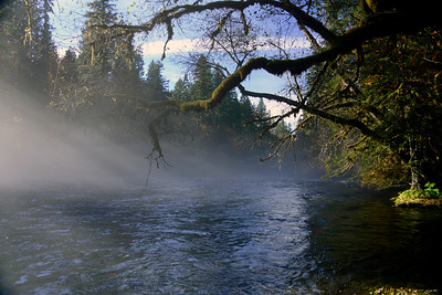 Mckenzie River - Oregon Travel Photography - USA