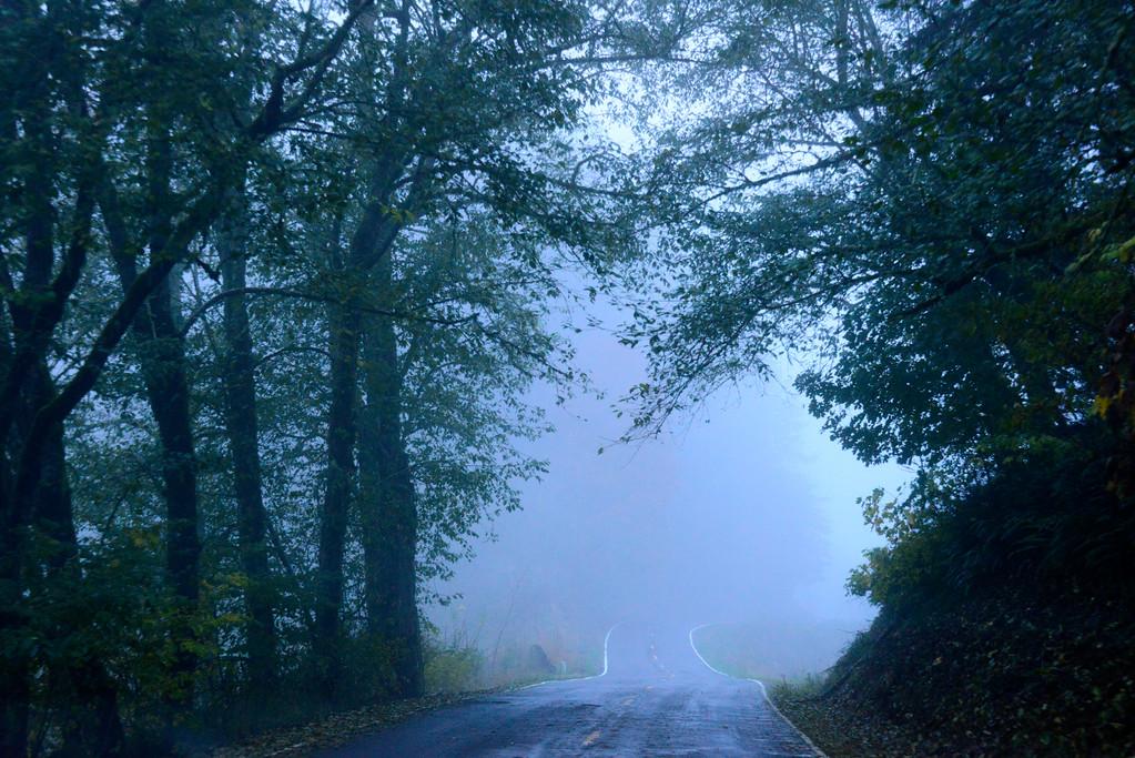 Foggy Road - Oregon Travel Photography - USA