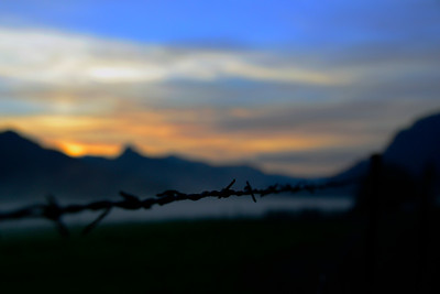 Barbed wire in the fog - Near Winchester Bay - Oregon Travel Photography - USA