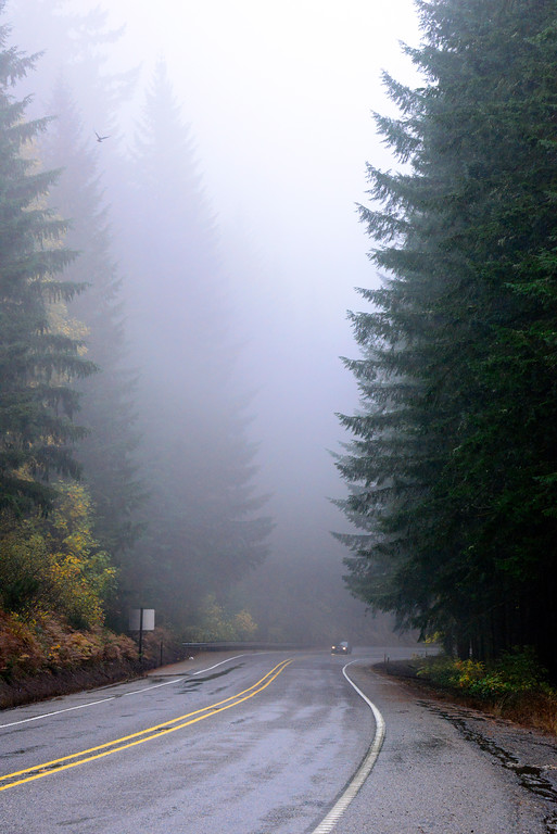Foggy Road - Oregon Travel Photography - USA