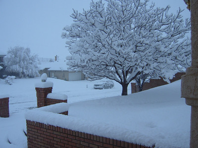 Oregonian Christmas & Palmdale SNOW!! 2008