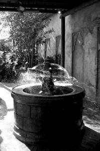 Fountain in the Animal Kingdom at Disney World.