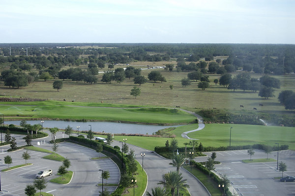 "<font size=""3"">Even in Florida, the golf courses need a lot of water.  You can clearly see where the course ends.</font>"