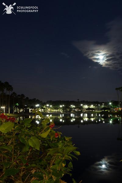 Orlando, January 2013