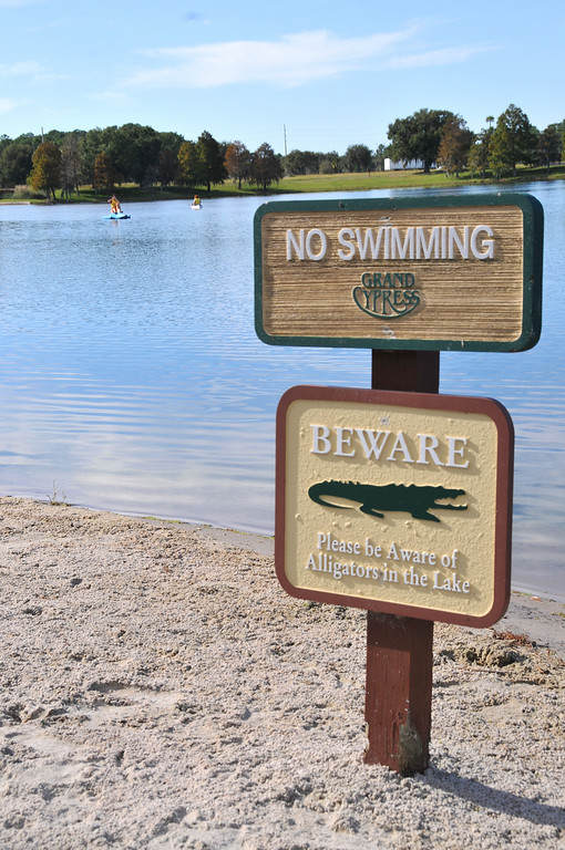 Beware of gators!