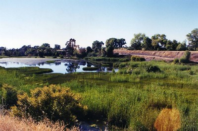 oroville wildlife area0001