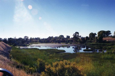 oroville wildlife area0002