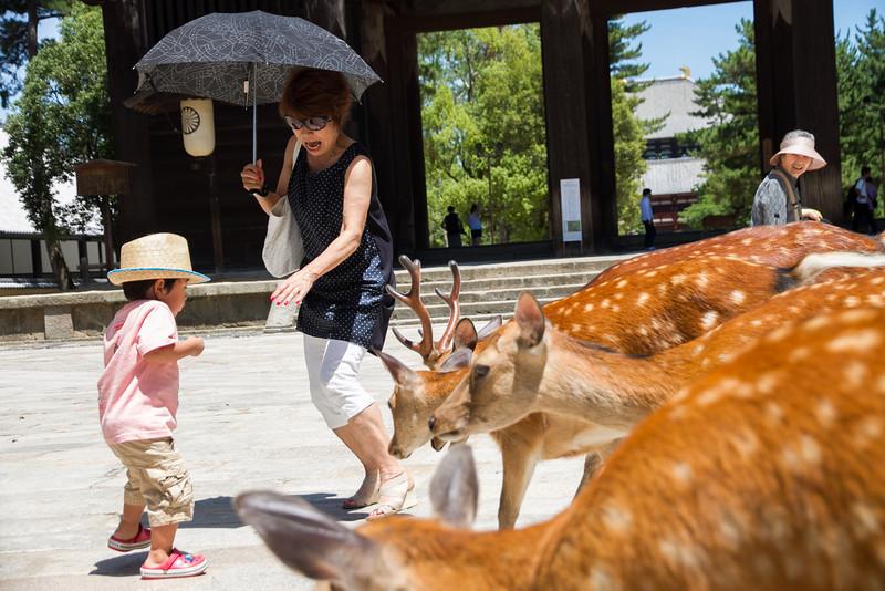 Poor kid was terrified as the deer rushed him