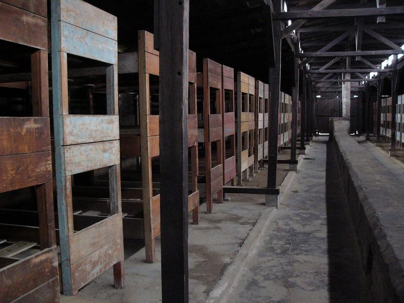 bunks Auschwitz