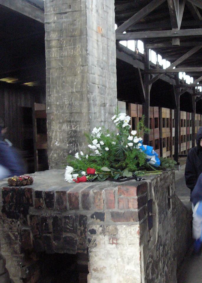 Flowers left in barracks at Auschwitz