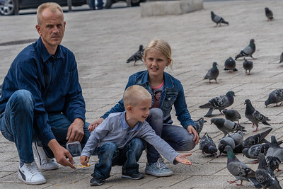 A family feeding the pigeons in the pedestrian area of Sarajevo