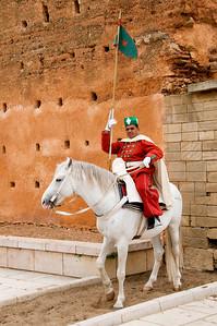 _DSC0353_horse_guard