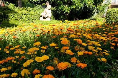 _DSC5761_Pergola_garden