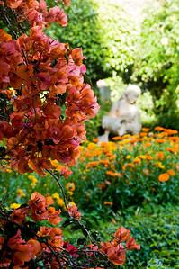 _DSC5788_Pergola_garden