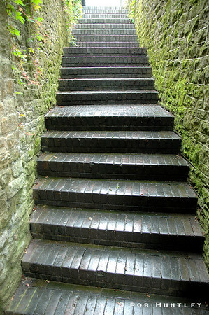 Wet stone stairs and mossy stone walls. A public thoroughfare in Guildford, UK. © Rob Huntley