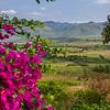 Bougainvillea, the plain, and the Sierra del Escambray